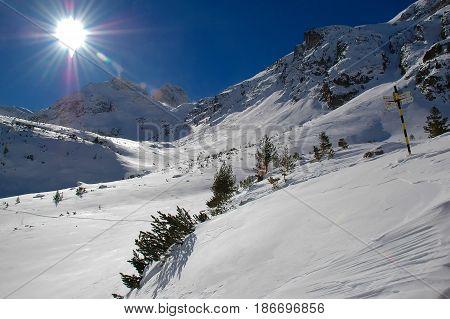 Sunny Winter view with peak Maliovica in Rila national park Bularia