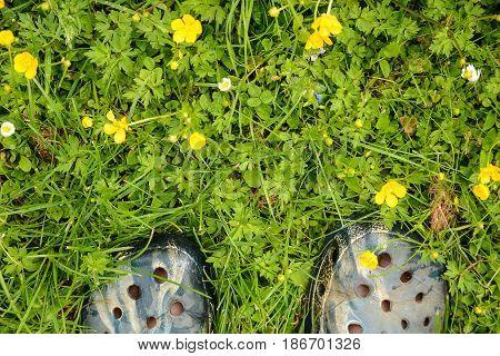 Feet in clogs standing in a garden