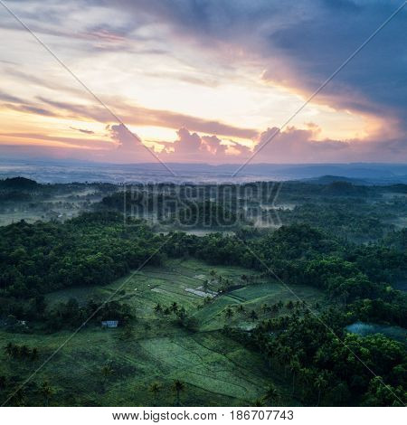 Aerial view of landscape with mist in morning light. Bohol, Philippines 2017.