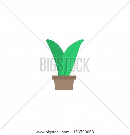 Flat Herb Element. Vector Illustration Of Flat Plant Isolated On Clean Background. Can Be Used As Herb, Plant And Grower Symbols.
