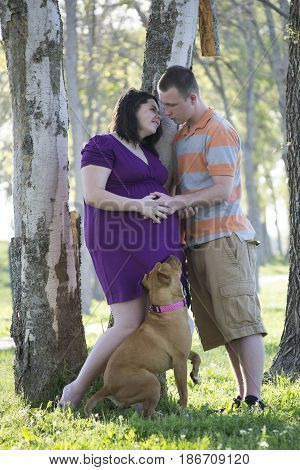 Pregnant woman and daddy with their dog posing for a family portrait.
