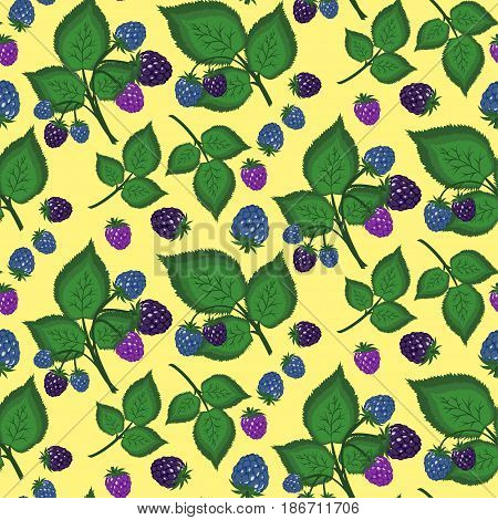 Seamless Background Of Sweet Berries And Blackberry Leaves. Pattern