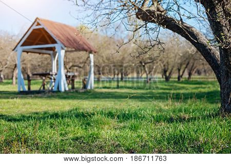 Spring has come. Outdoor wooden gazebo for family dinners on a green vernal lawn of a country house yard