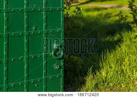 opened riveted green door with selective focus and summer grass