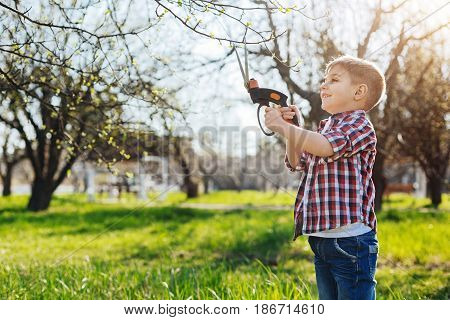 Taking care of nature. Positive brown haired child working in a garden in a spring sunny day and taking care of fruit trees with a pair of secateurs