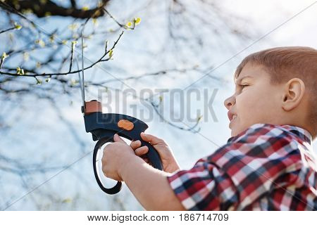 Little environmentalist during work. Adorable school boy helping his family and cutting the branches with a pair of professional secateurs