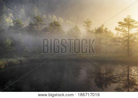 bog lake in morning fog romania, transylvania