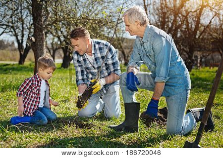 The process of teaching. Older male generation showing a cute little boy how to take thought for natural surroundings by setting a fruit tree in a family garden