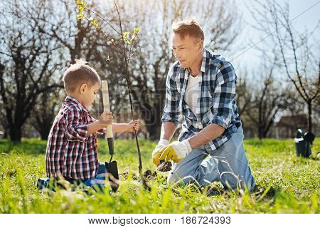 Gardening is a recreation. Two male family members working outdoors together, covering over turf with a compost using handle soil scoops
