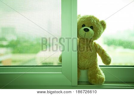 Teddy Bear toy alone Standing at the window Waiting for someone to have hope.