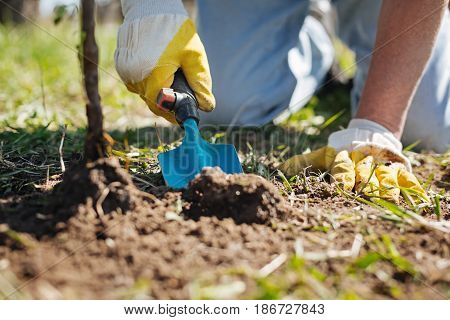 Gardening process. Man wearing yellow rubber gloves improving his family garden buy top dressing the soil with a compost