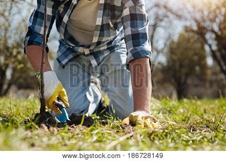 Spring has come. Mature guy in a plaid shirt covering over turf with a compost using a handle soil scoop