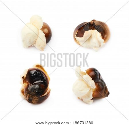 Semi-opened popcorn kernel isolated over the white background, set of four different foreshortenings