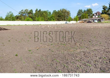 Plowed land on vegetable garden in Ukrainian village in spring