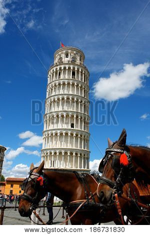 Leaning tower of Pisa with horses Italy