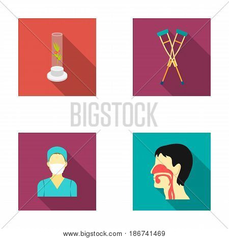 Plant in vitro, crutches, nurse, human respiratory system. Medicine set collection icons in flat style vector symbol stock illustration .