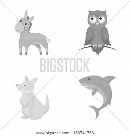 Donkey, owl, kangaroo, shark.Animal set collection icons in monochrome style vector symbol stock illustration .