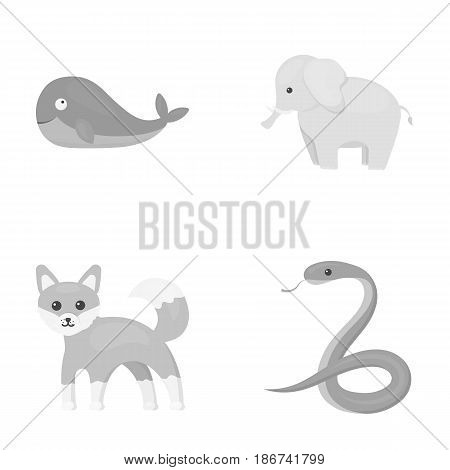 Whale, elephant, snake, fox.Animal set collection icons in monochrome style vector symbol stock illustration .