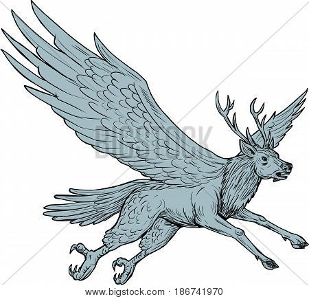 Drawing sketch style illustration of a Peryton a Medieval European mythical creature with head forelegs and antlers of a full-grown stag with the wings plumage and hindquarters of a bird flying viewed from the side set on isolated white background.