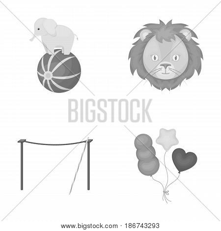 Elephant on the ball, circus lion, crossbeam, balls.Circus set collection icons in monochrome style vector symbol stock illustration .