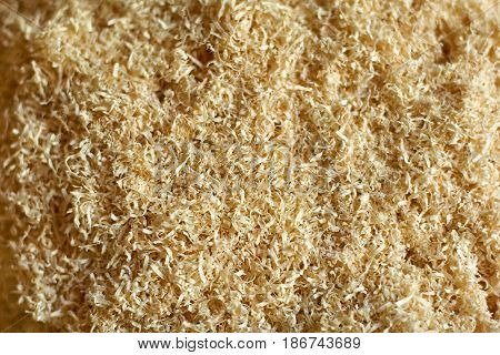 An abstract wood chip background light yellow, sharp at the center and soft at the edges