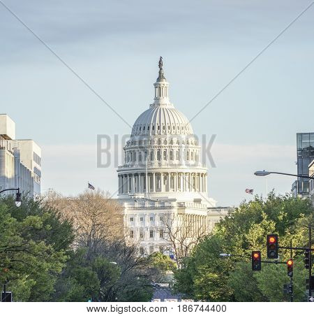 Famous US Capitol in Washington DC - WASHINGTON DC - COLUMBIA