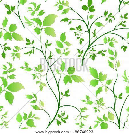 Floral leaves seamless pattern. Garden blossom background. Spring  leaf vegetation nature decor