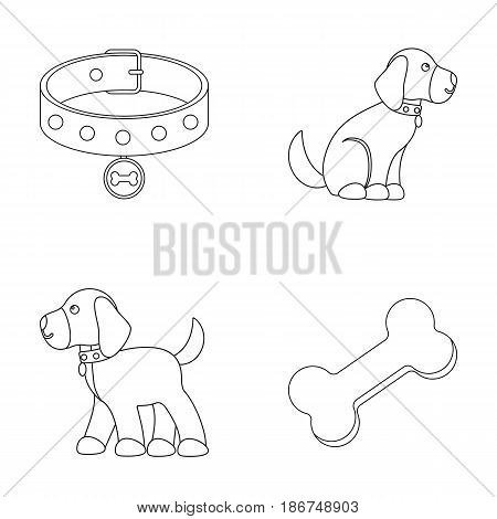 Bone, collar, sit, food.Dog set collection icons in outline style vector symbol stock illustration .