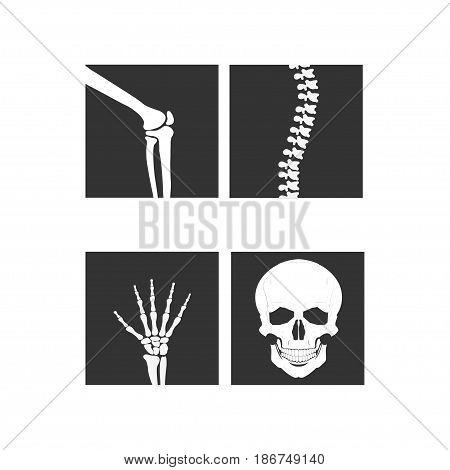 knee joint, wrist hand . Medical orthopedic of set. Anatomy human illustration icon leg and bone skull spine elbow - vector