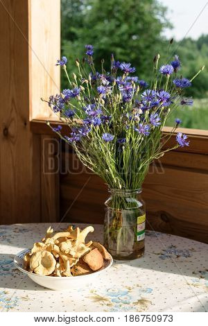 On the porch on the table is a glass jar with a bouquet of flowers of cornflower. On the table is a plate full of mushrooms chanterelles. In the background forest trees.
