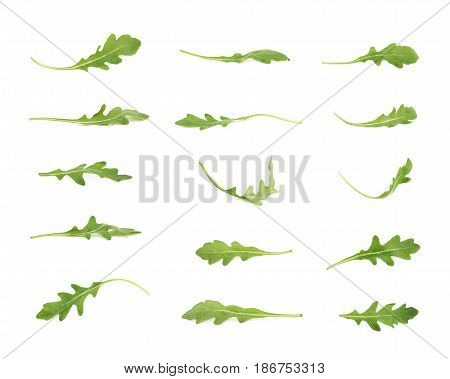 Single green rucola rocket salad leaf isolated over the white background, set of multiple different foreshortenings