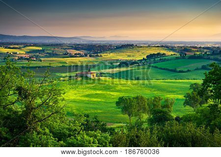 Maremma rural sunset landscape. Countryside farm and green fields. Elba island on horizon. Tuscany Italy Europe.