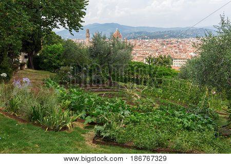 Giardino Bardini With View Over Florence, Italy