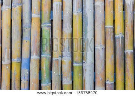 bamboo fence wall texture background shallow depth of field
