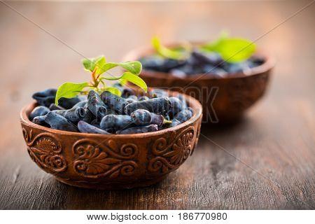 Freshly picked honeyberry or blueberry