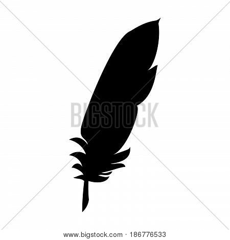 Feather The Black Color Icon .