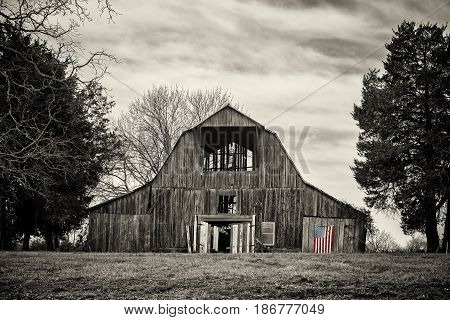 Old abandoned A frame barn sided by trees in black and white with an american flag in selective color hanging on side door