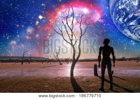 Fantasy Landscape Of The Future - Person Silhouette Standing On Barren Land With Bare Trees And Huge