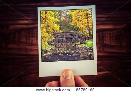 Hand Holding Polaroid Photograph Of Autumn Scene In Australian Garden - Beautiful Wooden Bridge Over