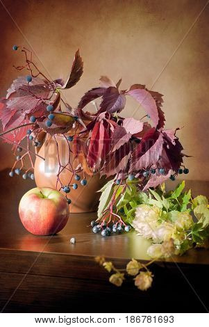 Still life in vintage style with wild grapes, apple, jug and hops on a wooden dark table. Image for printed materials and backgrounds.