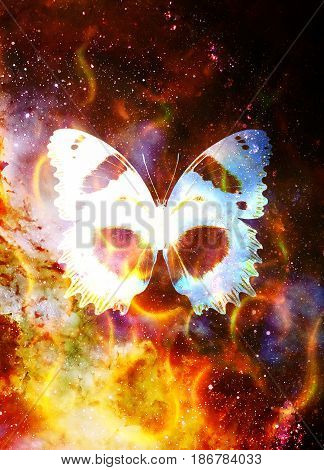 butterfly in cosmic space and fire flame. Color cosmic abstract background