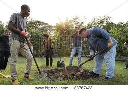 Group of Diverse People Digging Hole Planting Tree Together