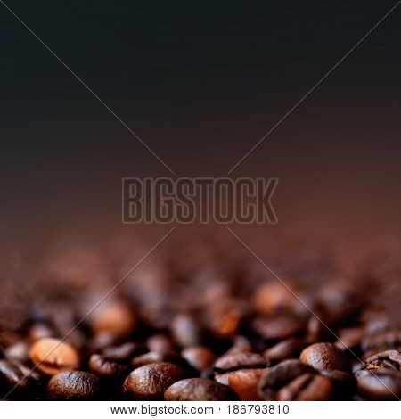 Coffee Beans Caffeine Roasted Brown Espresso with copy space close up. Fried Coffee Beans Texture macro