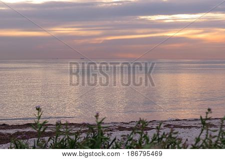 Semaphore beach seas South Australia sunlight sunset light plant grass