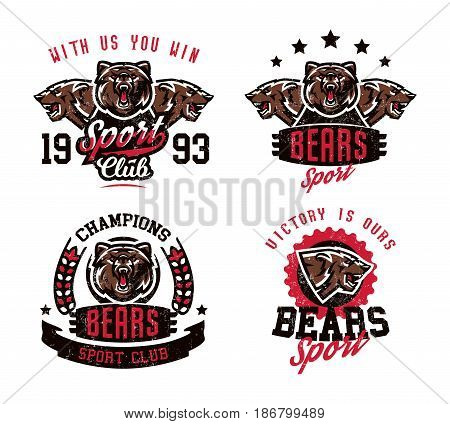 A collection of designs for printing on T-shirts, an aggressive bear ready to attack. Predator forests, dangerous animals, grizzly, wild animal, mascot, lettering. Vector illustration, grunge effect.