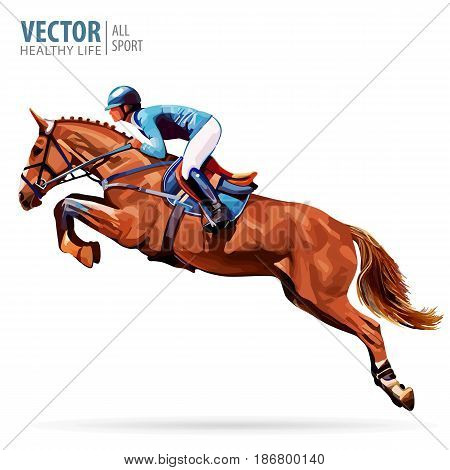 Jockey on horse. Champion. Horse riding. Equestrian sport. Jockey riding jumping horse. Poster. Sport background. Isolated Vector Illustration