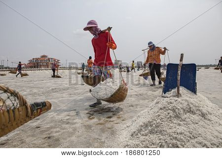 PETCHABURI THAILAND - MARCH 23 : large number of worker harvesting stack of salt in salt farm Ban Leam district petchaburi province import salt produce area in central of thailand on march 23 2015 in petchaburi thailand