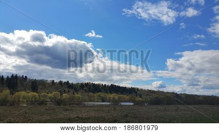 Riverspring forest and beautiful sky. Nature composition