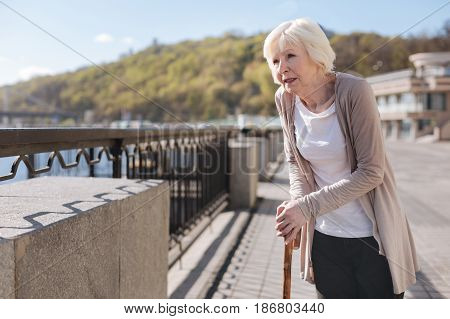 Refreshing memories. Good looking aged neat woman mulling over her future keeping stick in her hands and remembering good moments