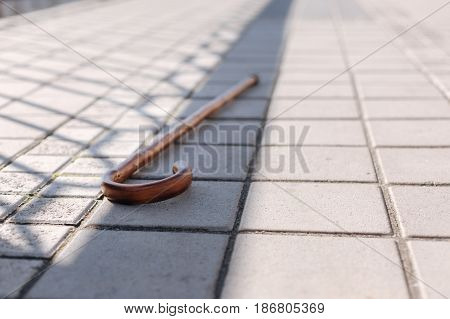 Essential helper for aged people. Wooden straight big stick abandoned on the ground